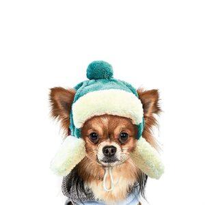 "Шапка зимняя для собак ""Ушанка"" Pet Fashion"