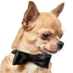 "Аксессуар для собак ""Бабочка"" Pet Fashion S, XS"