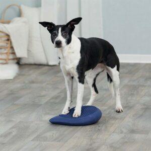 Тренажер для собак - Балансировочная подушка Trixie 28×4×28 см., резина, синяя, с насосом